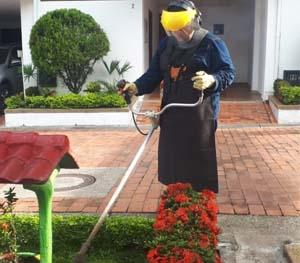 Mantenimiento conservación y embellecimiento de Jardines y Prados.